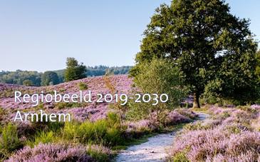 Regiobeeld Arnhem 2019-2030 - Menzis